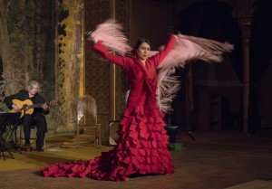 Mina Fajardo, Flamenco Dancer
